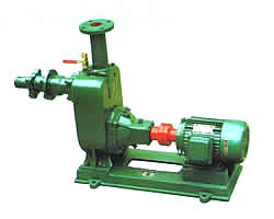 ZW自J式污水泵